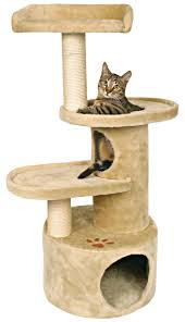Outdoor Cat Condo Plans by 41 Best Cat Tree Images On Pinterest Cat Furniture Cats And Cat