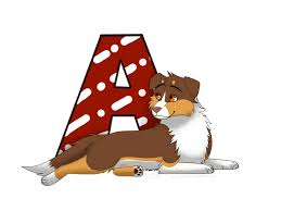 australian shepherd illustration a for australian shepherd by dolfiy on deviantart