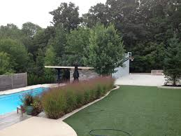 a backyard pool and a backyard half court