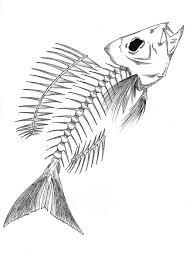 ผลการค นหาร ปภาพสำหร บ fish skeleton sketch ปลา pinterest