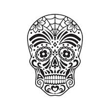 Day Of The Dead White Day Of The Dead Pink And White Skull Royalty Free Stock Image