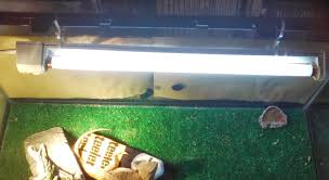 i don t have lids on my bear tanks so i can keep these hanging off the back without a problem my rescue iguana sancho keeps trying to escape so i had to