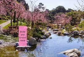 balboa park u0027s japanese friendship garden wedding idea san diego