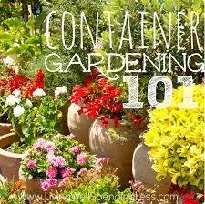 gardening 101 container gardening container vegetable