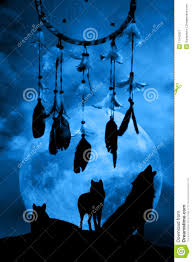 wolves and dreamcatcher stock illustration illustration of