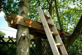 tree platform things we make