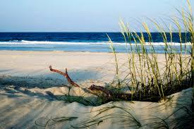 tybee beach tybee island beaches