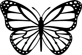 butterfly and flower cartoon black and white