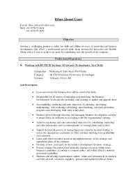 Sales Objective For Resume Resume Hi Tech