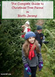 christmas tree locations nj christmas lights decoration
