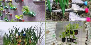 Bottle Garden Ideas 9 How To Reuse Diy Plastic Bottle Garden Projects Creative Ideas