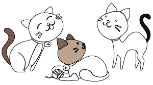 how to draw cat and dog coloring pages animals drawing cat dog