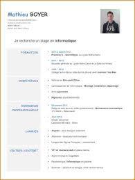 11 Exemple De Cv 3eme Faire Un Cv En 3eme Contrat De Travail 2018