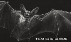 how to draw a vampire bat prepare for halloween youtube