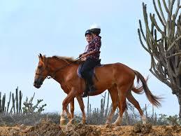 Nice Hourse Nice Sunday Morning Tour U2013 Rancho Washikemba Horse Ranch Bonaire