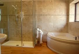 One Piece Bathtub Shower Units Shower Jetted Bathtub Shower Combo Cool Bathroom On Corner