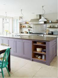 purple kitchen houzz