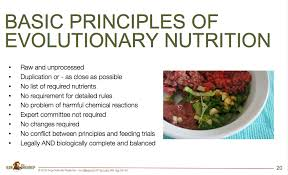 why aafco guidelines are useless for raw dog food dogs naturally