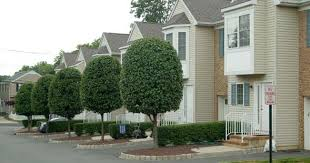 3 bedroom apartments nj red bank nj apartments for rent in monmouth county new jersey