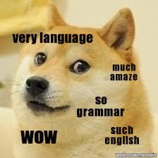 Much Doge Meme - doge pronunciation meme 28 images 24 best images about much doge