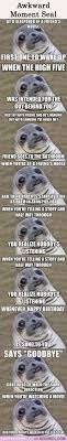 Awkward Seal Meme - your fly was down awkward moment seal pinterest awkward