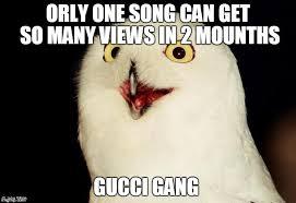 Meme Orly - orly owl meme generator imgflip