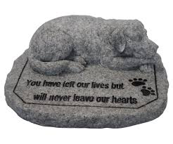 in memory of your beloved labrador the labrador site