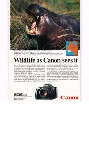 237 best canon ads u0026 collateral images on pinterest canon canon