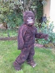 Yeti Halloween Costume 25 Bigfoot Costume Ideas Owl Makeup Animal