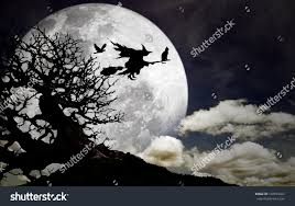 silhouette witch her cat crow flying stock photo 103974461