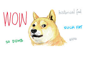 So Doge Meme - shiba inu meme what is a doge exactly my first shiba inu