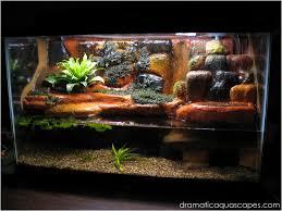 Diy Aquascape Dramatic Aquascapes Diy Aquarium Background Plateau And
