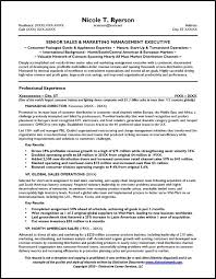 Whats A Good Job Objective For Resumes by Sample Resume Profile Statements Resume Sample Database Resume