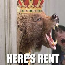 Patient Bear Meme - we spoke to the infamous landlord bear a capitalist meme run amok