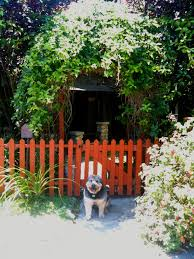 diy curb appeal create a welcoming botanical archway homejelly
