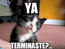 Sleepy Cat Meme - ya sleepy cat meme on memegen