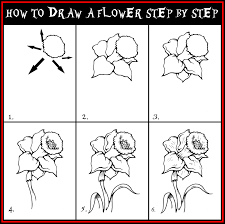 drawing flowers step by step sketching pinterest drawing
