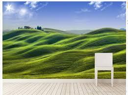 3d natural scenery grassland background wall murals mural 3d