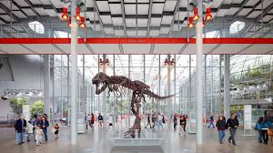 california academy of sciences hours admission