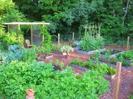17 best images about potager gardens on pinterest gardens