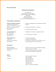 functional resume template pdf alluring functional resume sle pdf for exle format of resume 8