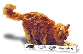 Cat Scratcher Replacement Pads Imperial Cat Scratch U0027n Shapes Scratch U0027n Pad Recycled Paper