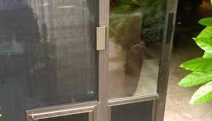 Exterior Dog Doors by Door Front Doors Coloring Pages Replacement Glass Front Door 3