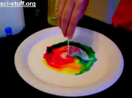 cool science 6th grade science project activity ideas for