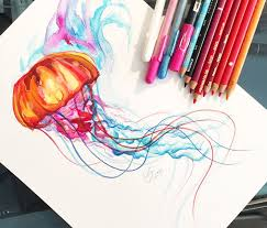 jellyfish color drawing by katy lipscomb art no 1451