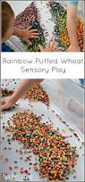 thanksgiving sensory table ideas 195 best autism sensory ideas images on pinterest sensory play