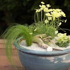 garden pots design ideas beach garden in a pot sunset