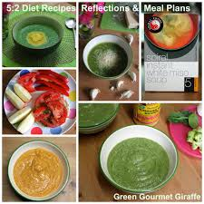 green gourmet giraffe 5 2 diet vegetarian meal plans