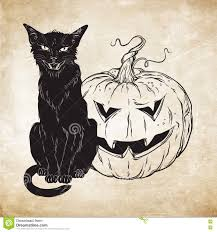 halloween cats background black cat sitting with halloween pumpkin over old grunge paper