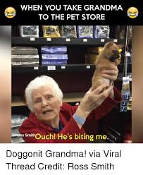 Funny Grandma Memes - 25 best memes about funny grandmas funny grandmas memes